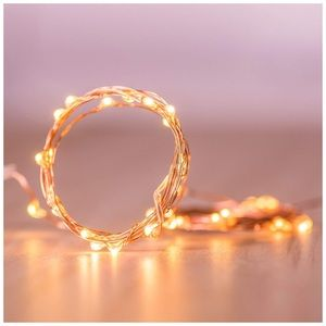 Other - Copper Wire Fairy Twinkle Lights 2pk